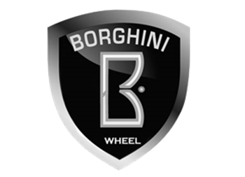 Picture for manufacturer BORGHINI